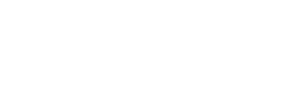 Metalock Engineering India