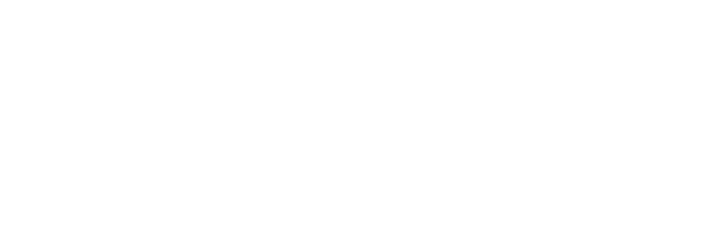 Metalock Engineering France SAS